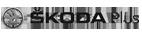 skodaplus_grey